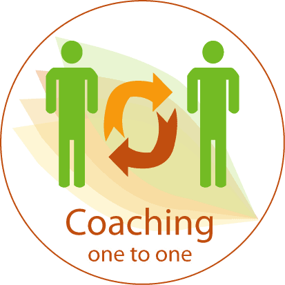 Change Zone's One on One coaching methodology in Managerial and technical Fields